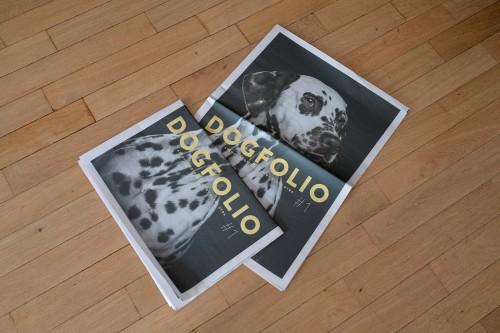 Dogfolio-3