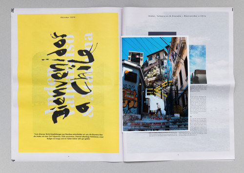 Fern Photography Travel Newspaper by Tom Reinert