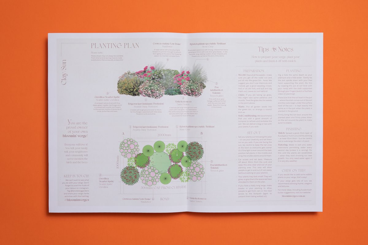 Bloomin' Verges planting guide by Landsberg Garden Design. Printed by Newspaper Club.