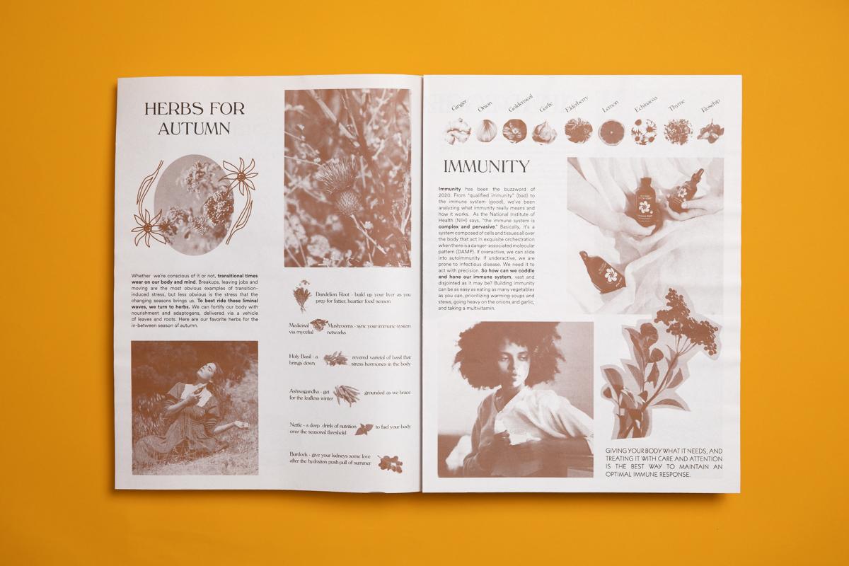 Wooden Spoon Herbs newspaper printed by Newspaper Club